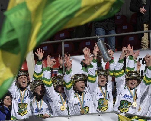 UPPSALA 20180317  Skutskär firar segern efter 3-2 i lördagens SM-bandyfinal mellan Aik Bandy och Skutskärs IF/BK på Sudenternas IP. Foto Janerik Henriksson / TT kod 10010